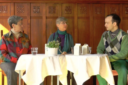 ACTIVE QUEERING: ANNE FAUSTO-STERLING + JULIE A NELSON + MADS ANANDA LODAHL